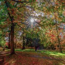 Park der Benediktiner-Abtei Trier, Foto: Inge Duhr