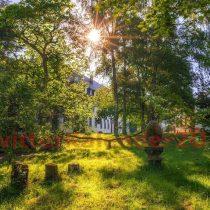 Mai-Kalenderbild: Blick in den Klostergarten von St. Mathias, Trier