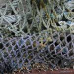 Fischernetze an der Nordsee, Foto: Elke Glatzer