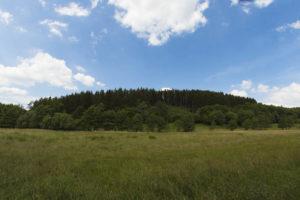 Wellenberg südlich von Nettersheim