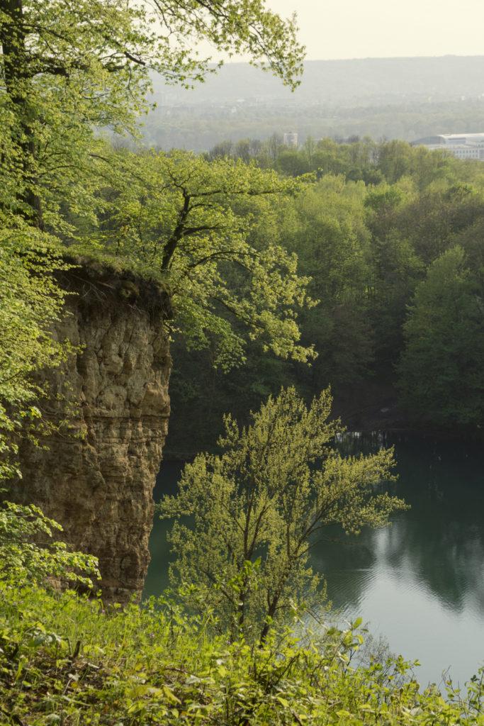 Rheinsteig bei Oberkassel - Blauer See