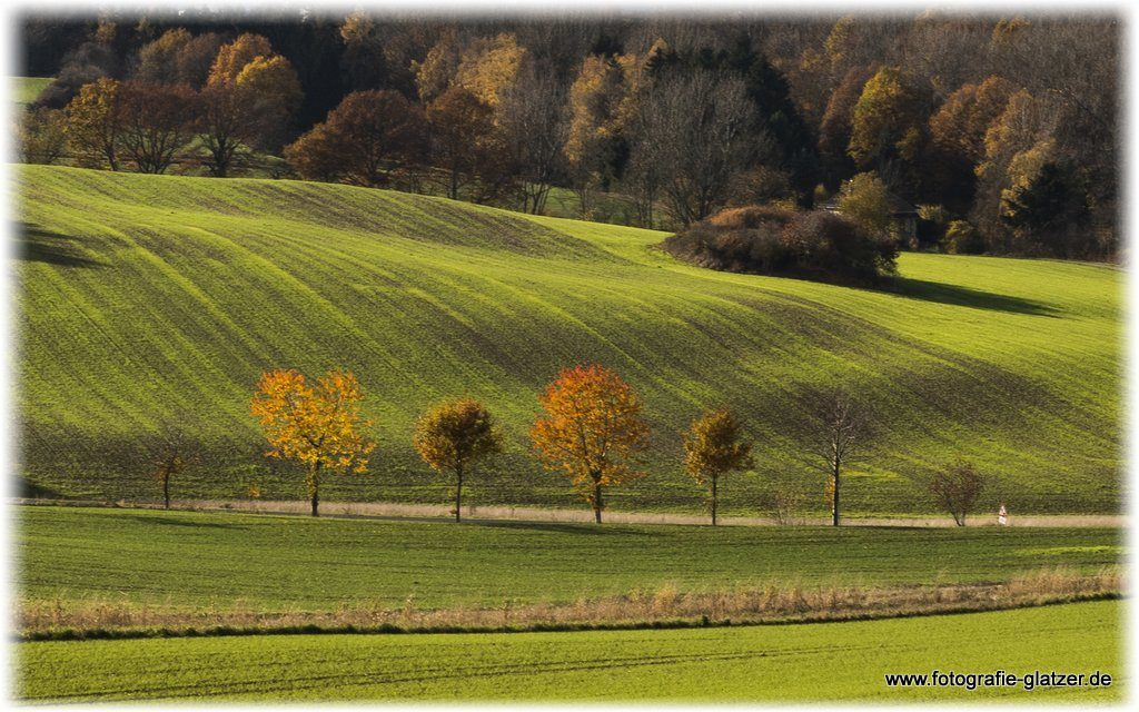 Herbstlandschaft bei Scheven