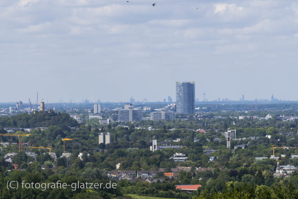 Landschaftsfoto mit Blick auf das Rheintal